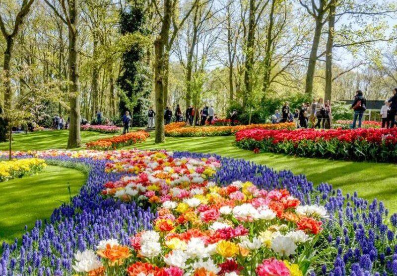 kekenhof-park-niderlandy (1)