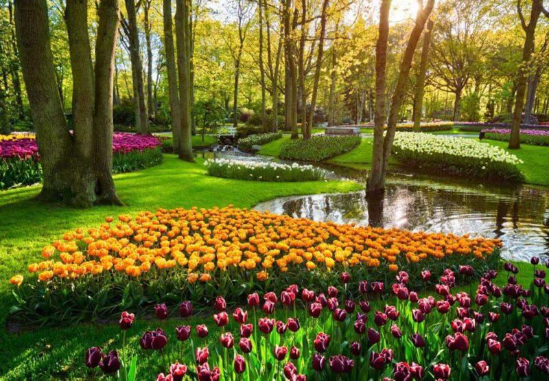 kekenhof-park-niderlandy (2)